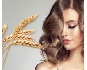 Протеин пшеничный — супергерой для поврежденных волос